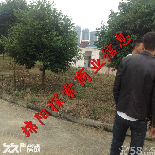 (出租)游仙综合市场对面高8米厂3千院坝硬化地面6千-图(1)
