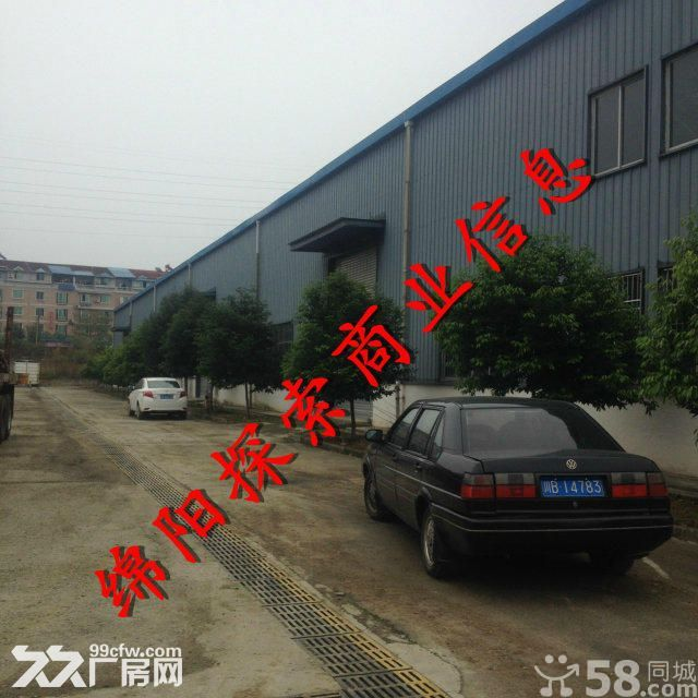 (出租)游仙综合市场对面高8米厂3千院坝硬化地面6千-图(5)