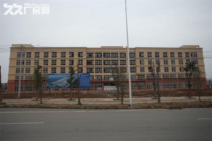 襄城尹集2500㎡五层办公楼、7000㎡厂房整体或部分出租-图(3)