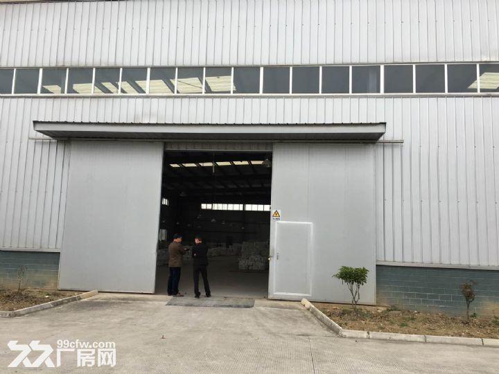 九洲体育馆对面3000平方标准厂房出租8元-图(4)