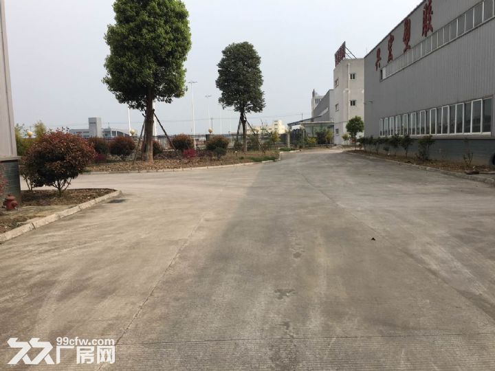 九洲体育馆对面3000平方标准厂房出租8元-图(6)
