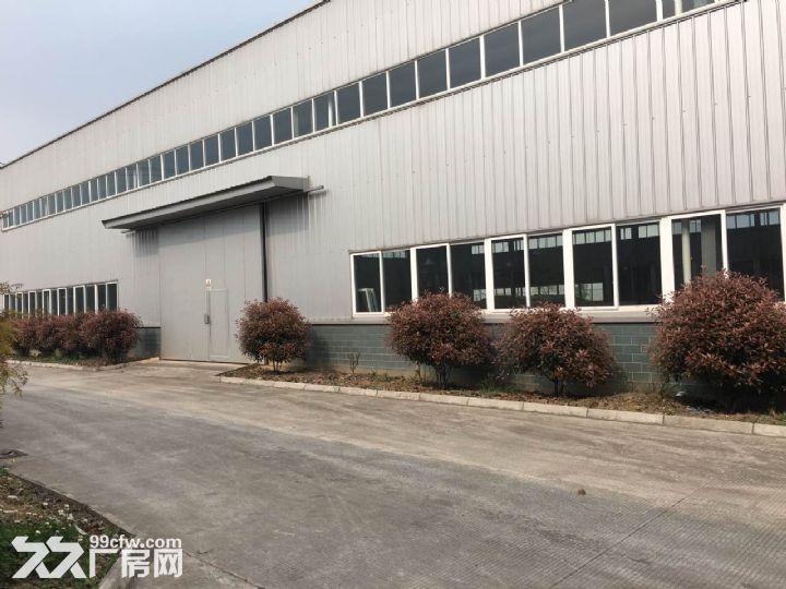 九洲体育馆对面3000平方标准厂房出租8元-图(7)
