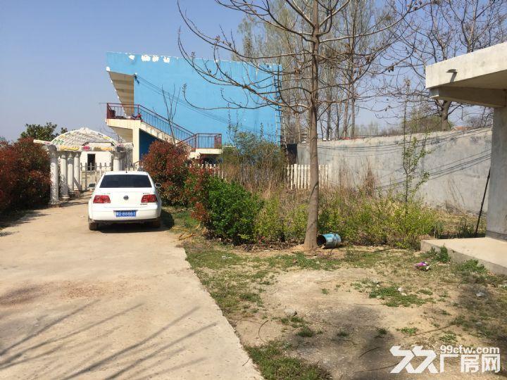 场院独院出租3400平米租金便宜湛河区-图(2)