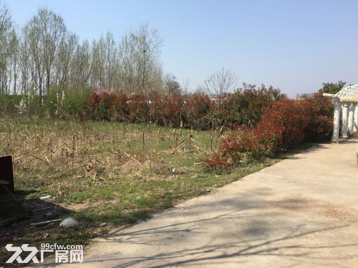 场院独院出租3400平米租金便宜湛河区-图(3)