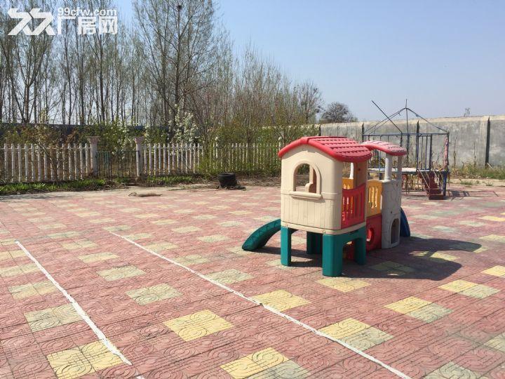 场院独院出租3400平米租金便宜湛河区-图(5)