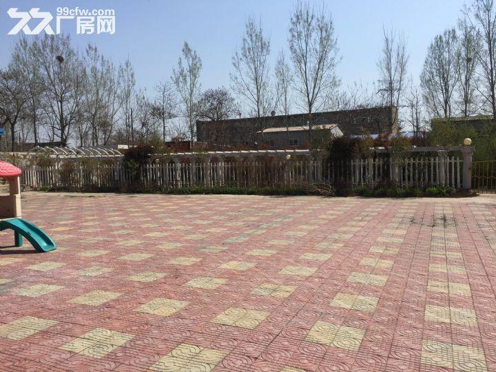 场院独院出租3400平米租金便宜湛河区-图(7)