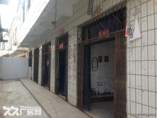 107国道400平仓库出租水电齐全-图(3)