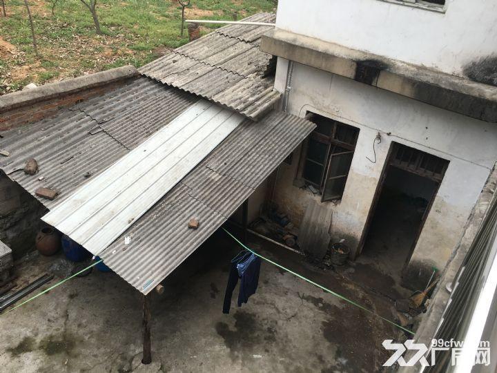 107国道400平仓库出租水电齐全-图(5)