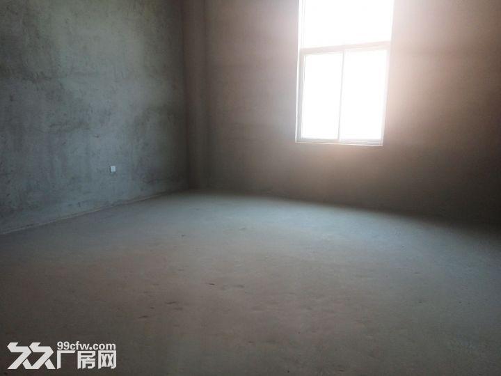 【精品独栋带院子工业厂房出售】-图(3)