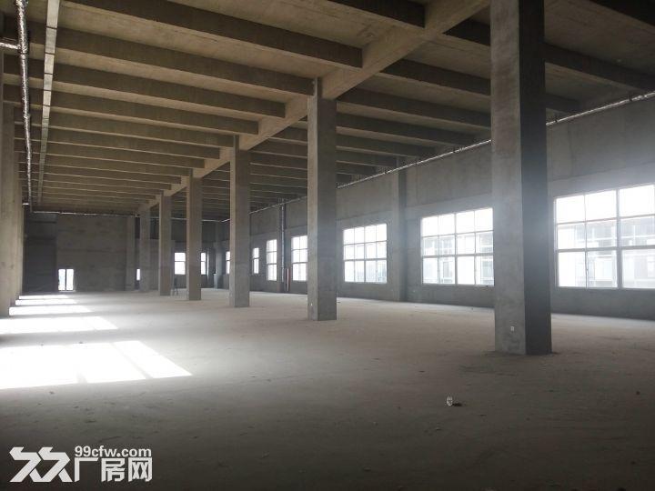 【精品独栋带院子工业厂房出售】-图(5)