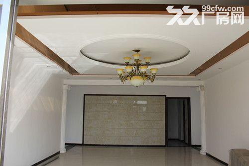 山东6600平米厂房出租仓库厂房出租厂房出租价格-图(4)