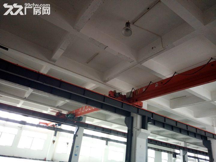 标准钢构带行车出租16元1平米-图(4)