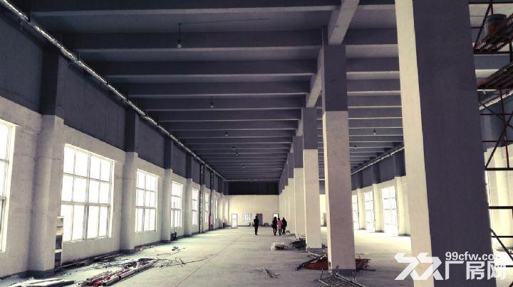 企业自由港•工社项目成品框架钢构厂房出售-图(7)