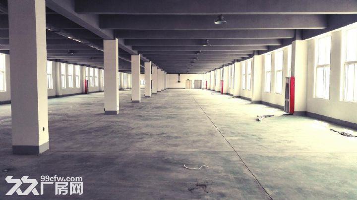 企业自由港•工社项目成品框架钢构厂房出售-图(8)