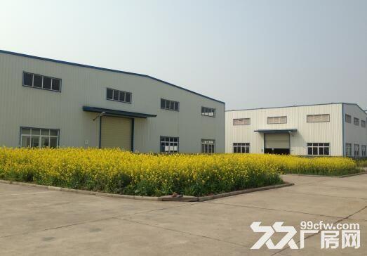 安陆府城工业园厂房对外招租-图(2)