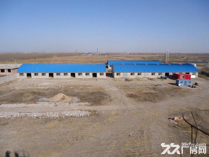 丰南区柳树圈100亩养殖用地带厂房水电手续齐全急租急售-图(4)