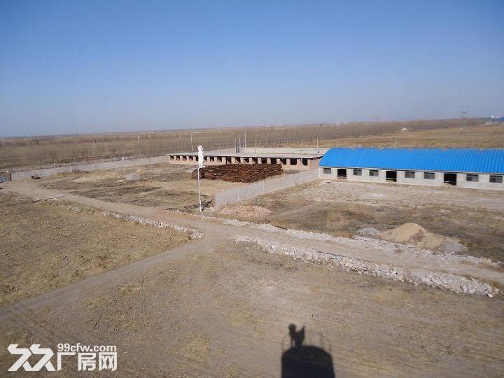 丰南区柳树圈100亩养殖用地带厂房水电手续齐全急租急售-图(5)
