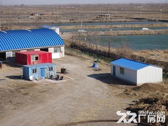 丰南区柳树圈100亩养殖用地带厂房水电手续齐全急租急售-图(6)