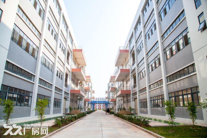 罗定双东环保工业园标准厂房出租-图(1)