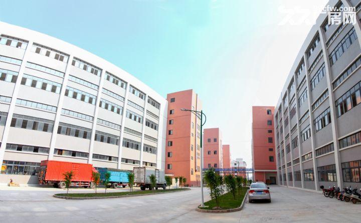 罗定双东环保工业园标准厂房出租-图(2)