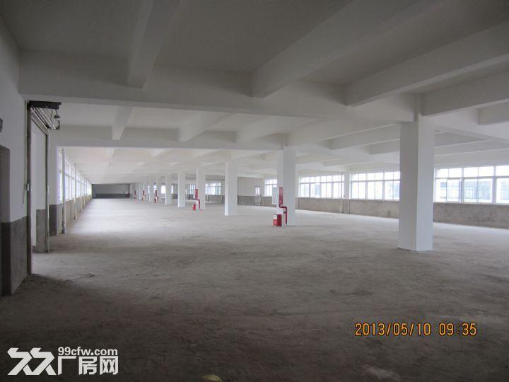 罗定双东环保工业园标准厂房出租-图(3)