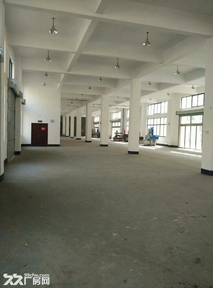 钢结构厂房对外招租,优惠多多,各类大小厂房,各种用法-图(1)