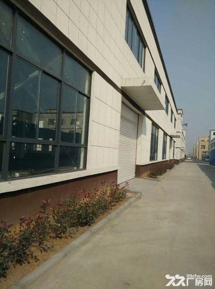 钢结构厂房对外招租,优惠多多,各类大小厂房,各种用法-图(3)