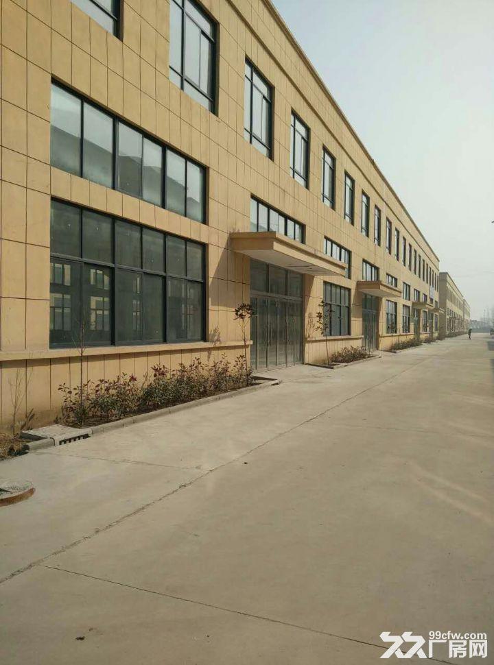 钢结构厂房对外招租,优惠多多,各类大小厂房,各种用法-图(4)