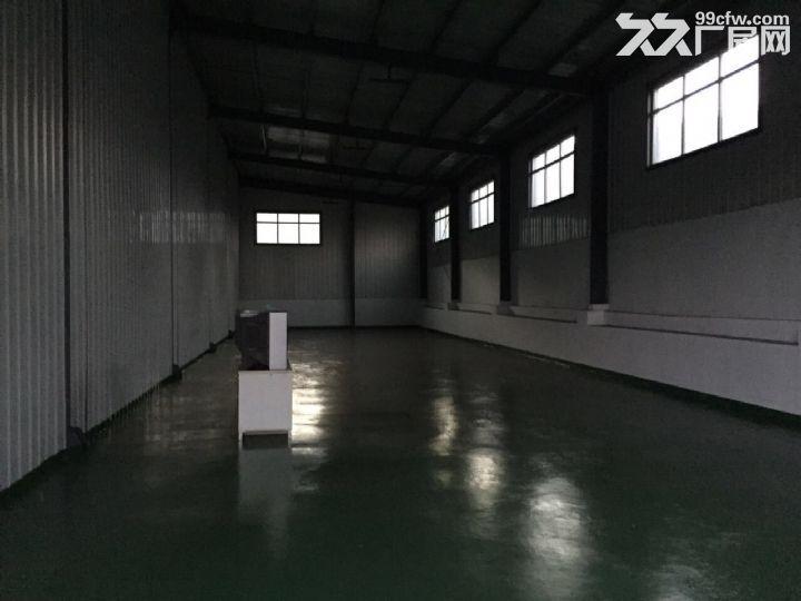 个人低价出租1300平米厂房-图(3)