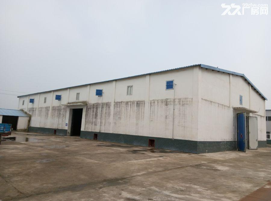 个人非中介安徽省寿县板桥草席厂厂房2间对外出租-图(1)