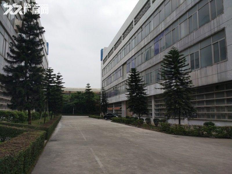 观澜清平高速口村委独院厂房招租1−5楼7000平米-图(1)
