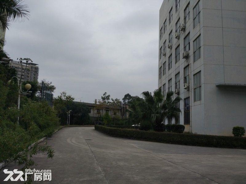 观澜清平高速口村委独院厂房招租1−5楼7000平米-图(2)