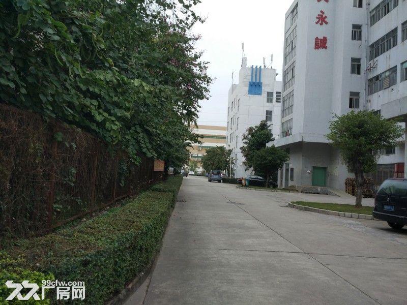 观澜清平高速口村委独院厂房招租1−5楼7000平米-图(5)