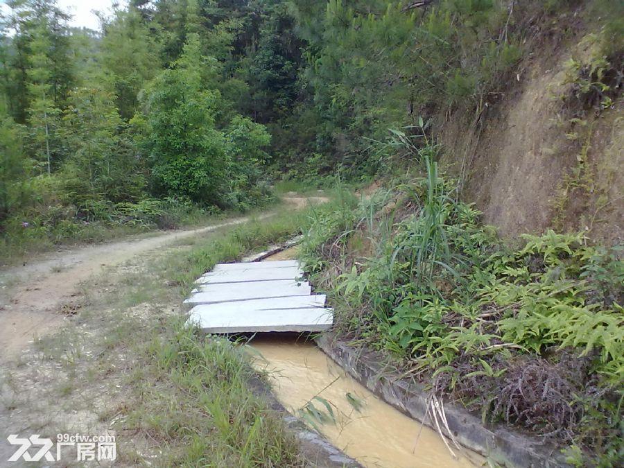从化良口黄龙带水库联平村1100亩山地转让-图(3)