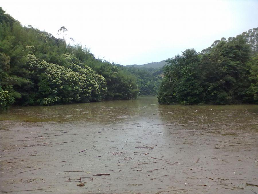 从化良口黄龙带水库联平村1100亩山地转让-图(7)