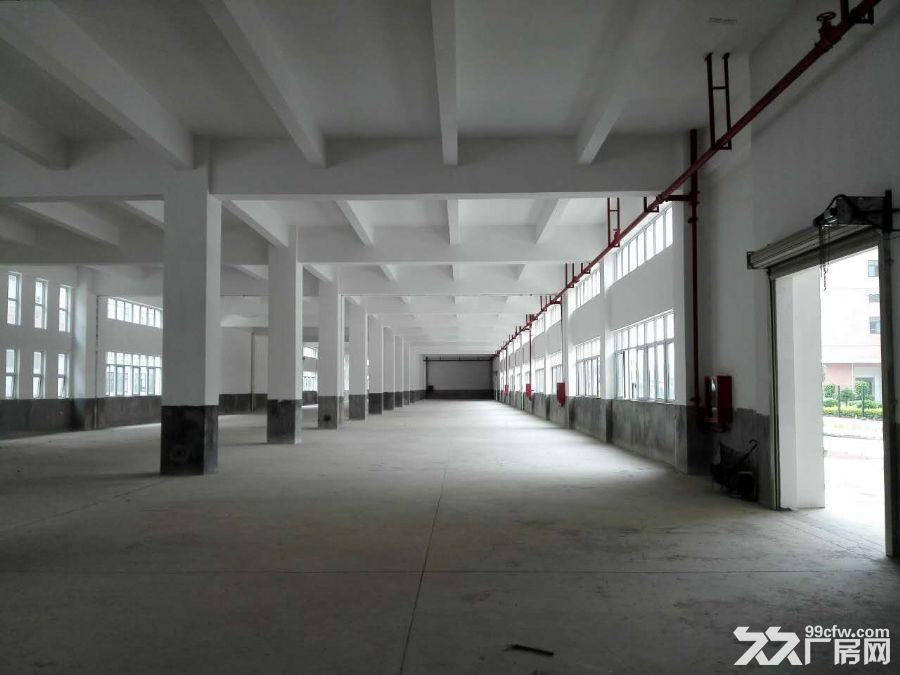 大型厂房出租价格优惠-图(7)