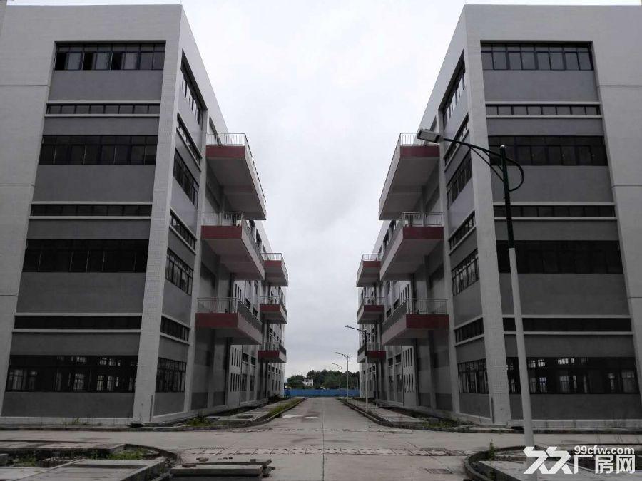 大型厂房出租价格优惠-图(8)