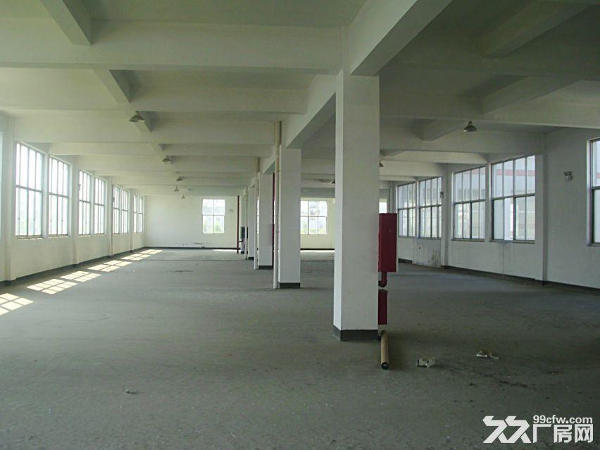 曾家厂房1000—5000标准平房厂房出租-图(1)