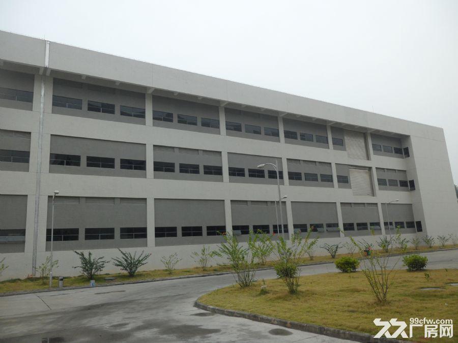广州经济开发区东区独院独栋两层厂房8100m²出租-图(1)