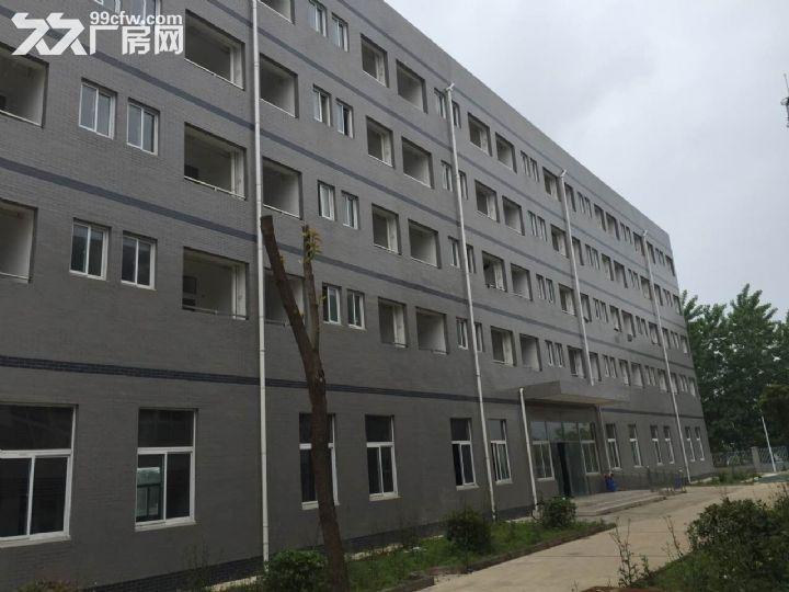 30米跨度单层钢构厂房1.8万平,框架3层共1万平,厂房出租-图(8)