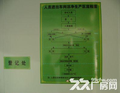 已通过GMP认证的标准车间出租-图(4)