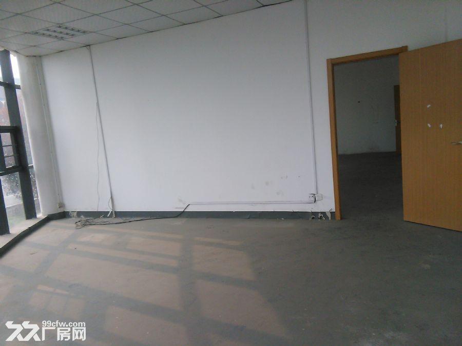 1−2层7700平方米厂房出租-图(4)