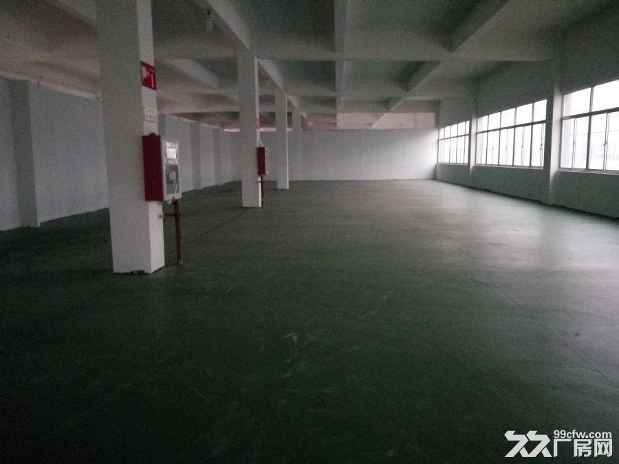 将军大道5500平方米有一层1150平方米二层1400平-图(2)