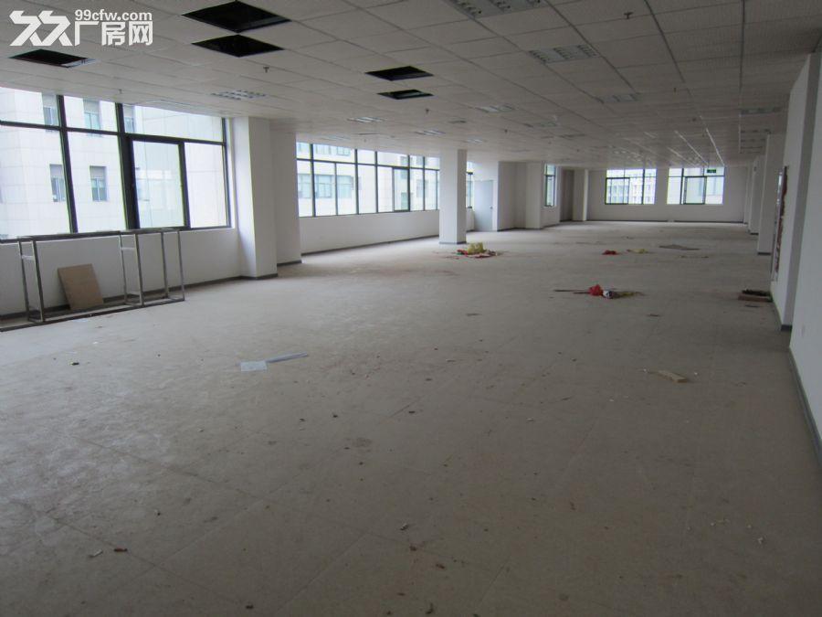 软件园旁办公楼厂房整层挑高4.2米长期出租30/平-图(6)