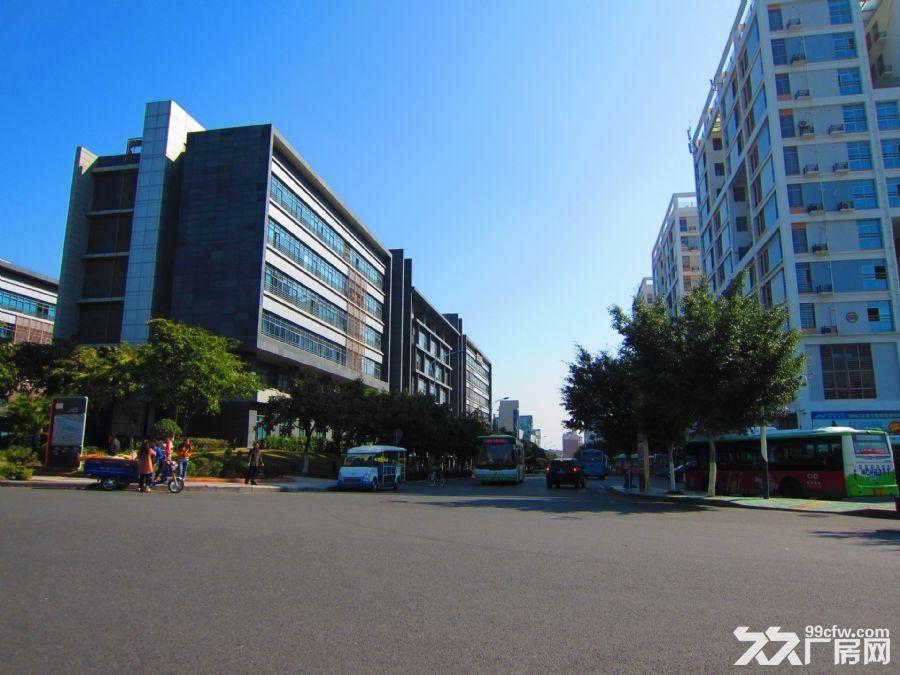 软件园旁办公楼厂房整层挑高4.2米长期出租30/平-图(7)
