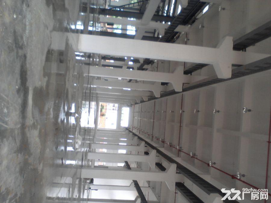 整栋标准厂房6000平方出租共两层可以分租-图(1)