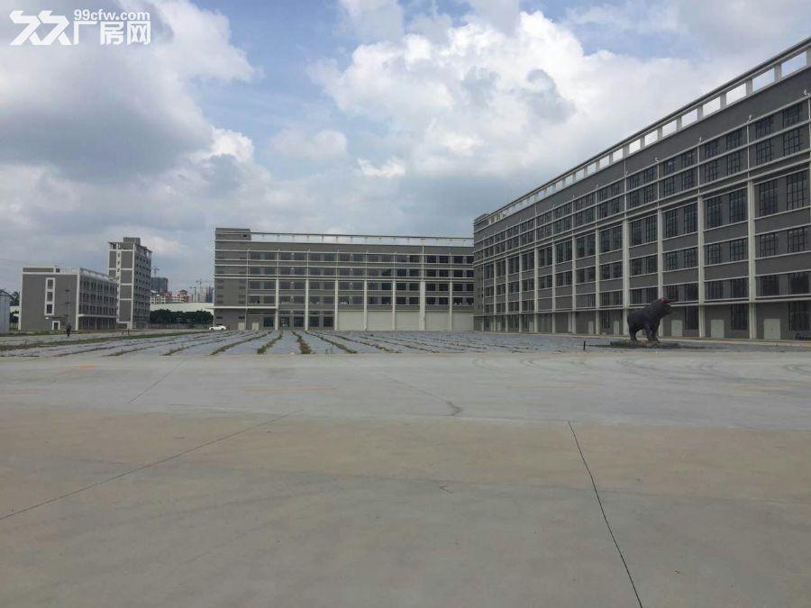 开发东区大型工业园区40000平方(可分租)厂房招租-图(1)