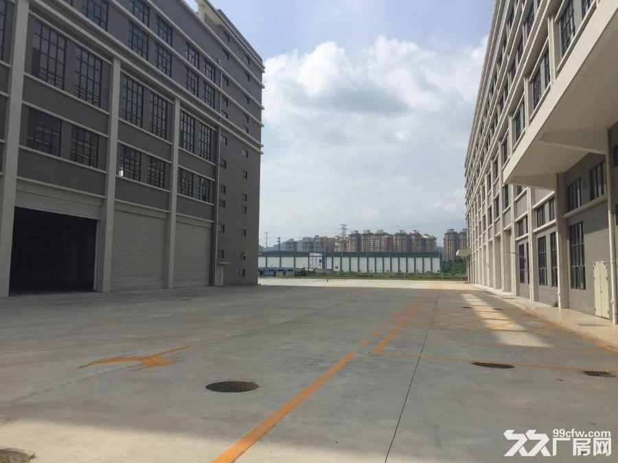开发东区大型工业园区40000平方(可分租)厂房招租-图(2)