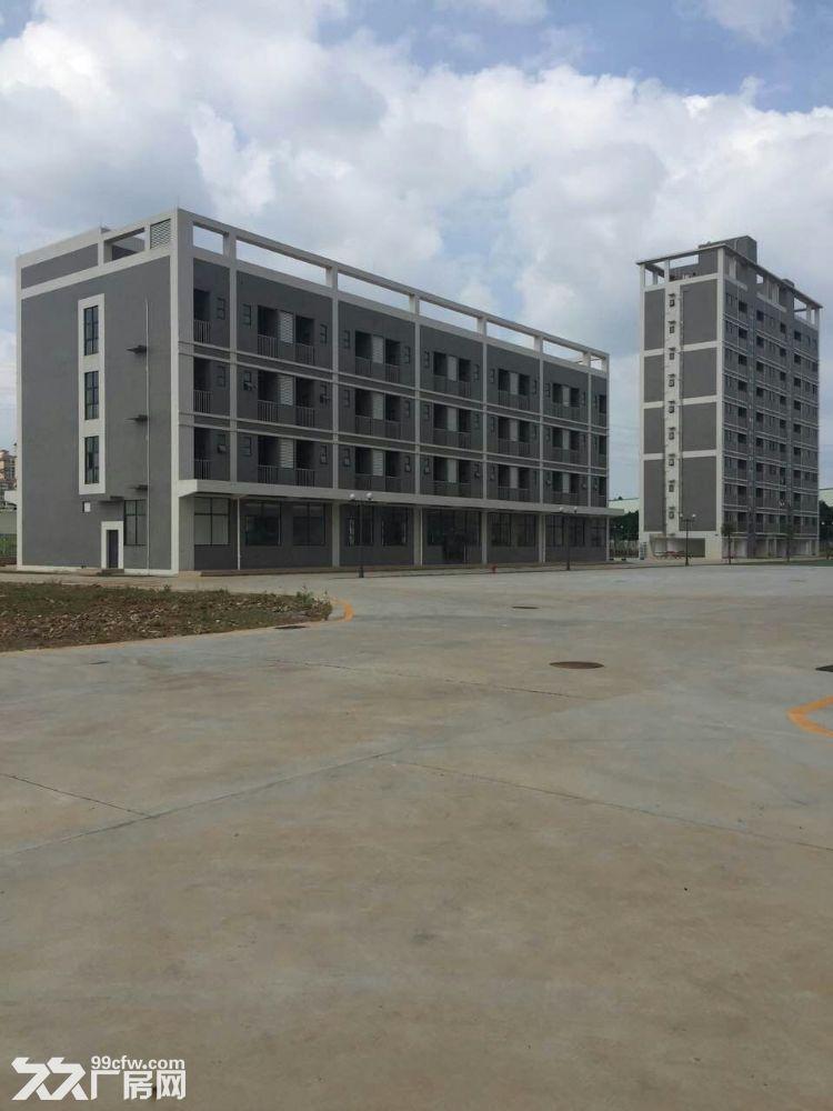 开发东区大型工业园区40000平方(可分租)厂房招租-图(4)