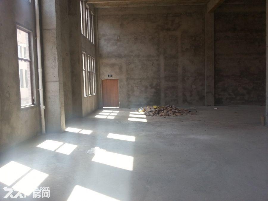 【现房厂房】1200平米-图(5)